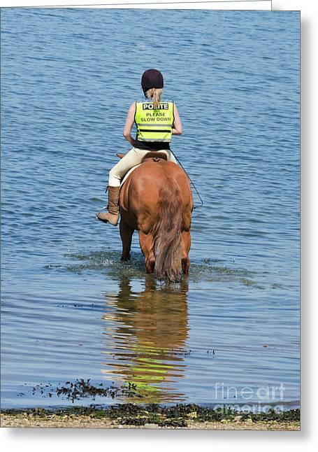 Paddling Horse Greeting Card by Terri Waters