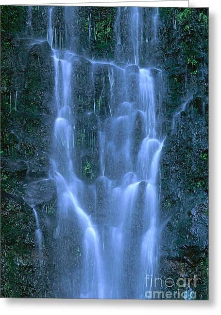 Paihi Falls Greeting Card by Bill Brennan - Printscapes
