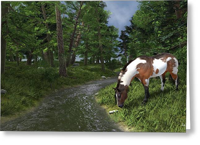 Paint Horse By The Forest Stream Greeting Card by Jayne Wilson
