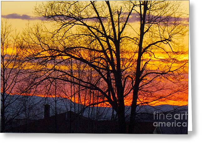 Paint Night Sunset Greeting Card by Alice Mainville