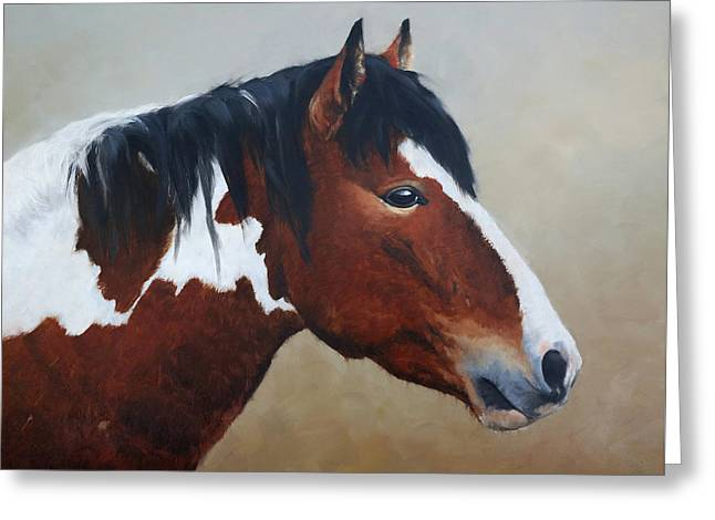 Paint Stallion Greeting Card