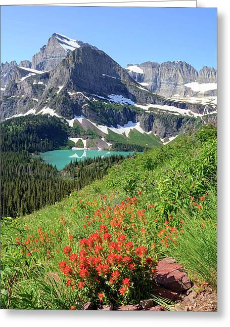 Paintbrush Above Grinnell Lake Greeting Card