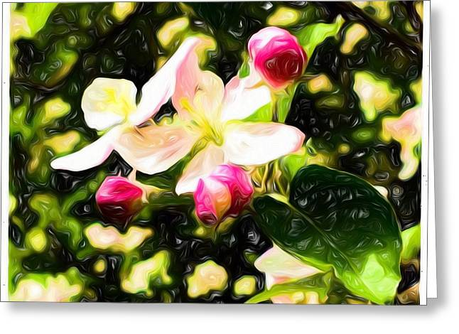 Painted Apple Blossoms Greeting Card