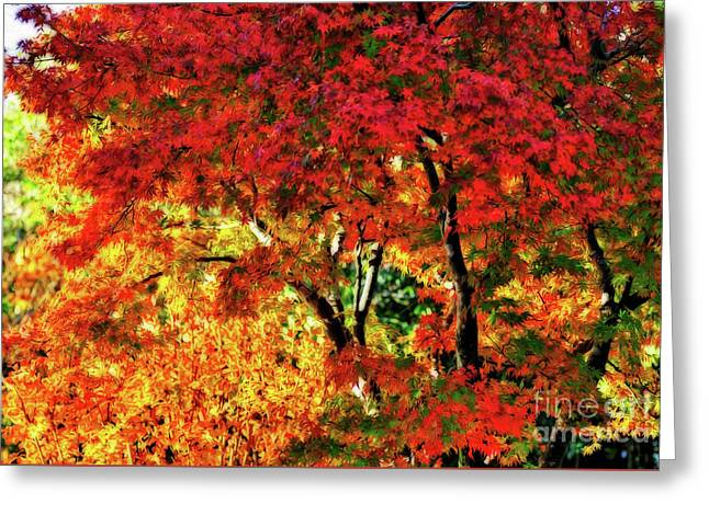 Painted Autumn By Kaye Menner Greeting Card
