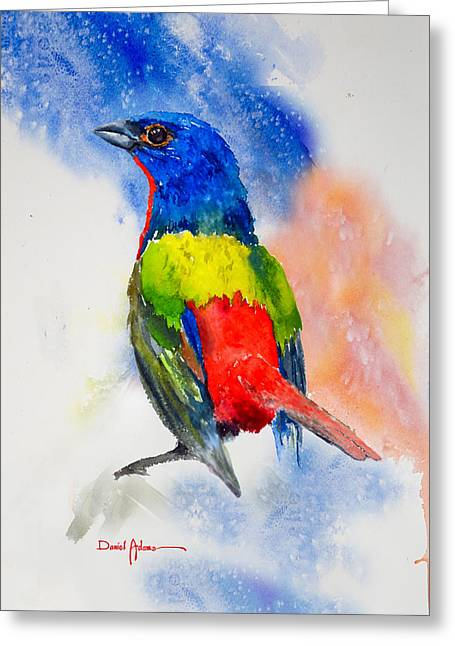 Da189 Painted Bunting Daniel Adams Greeting Card
