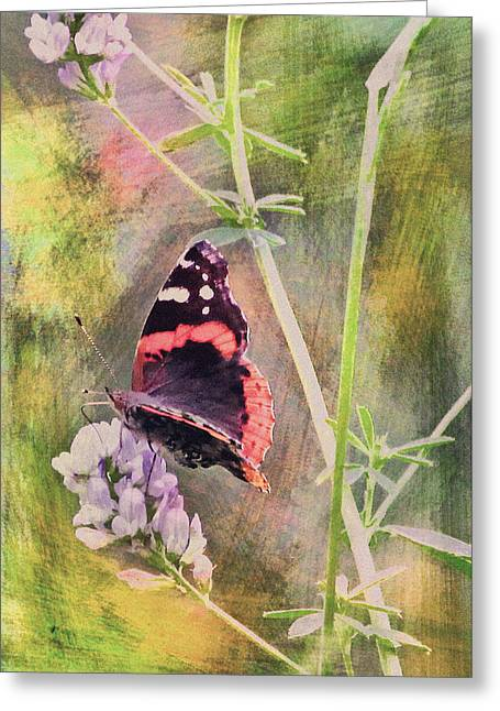 Painted Butterfly Greeting Card by James Steele