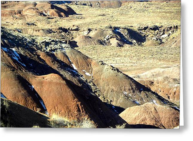 Painted Desert 11 Greeting Card by Patricia Bigelow