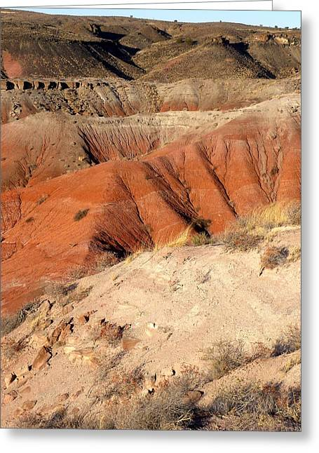 Painted Desert 3 Greeting Card by Patricia Bigelow