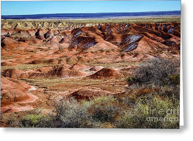 Painted Desert In Winter Greeting Card