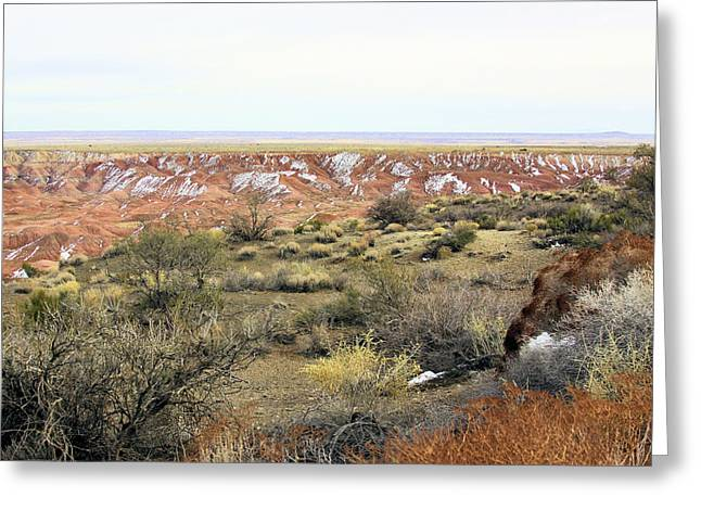 Painted Desert Winter 0571 Greeting Card by Sharon Broucek
