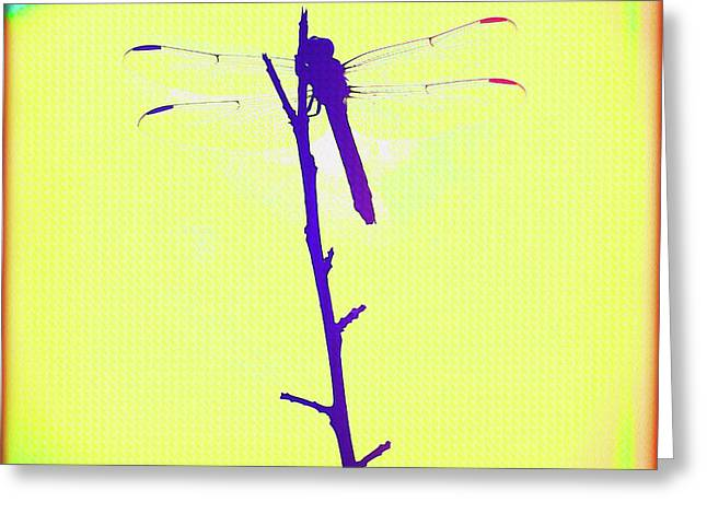 Painted Dragonfly I Greeting Card by Chris Andruskiewicz