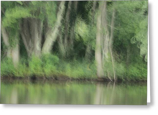 Painted Forest  Greeting Card by Karol Livote