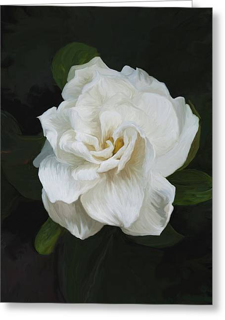 Greeting Card featuring the photograph Painted Gardenia by Phyllis Denton