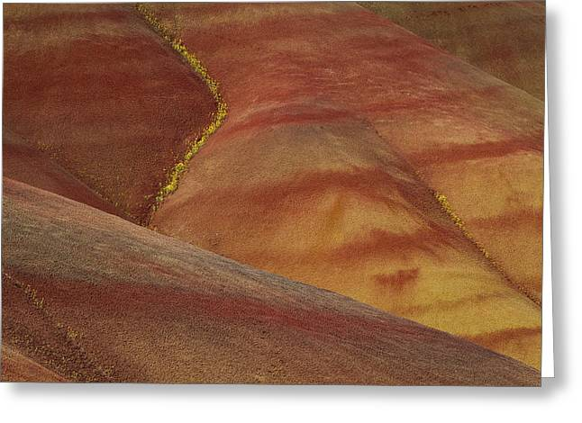 Painted Hills Diagonal Greeting Card by Jean Noren
