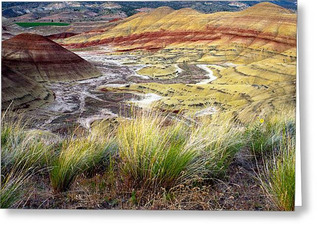 Painted Hills From Overlook Trail Greeting Card by Adele Buttolph