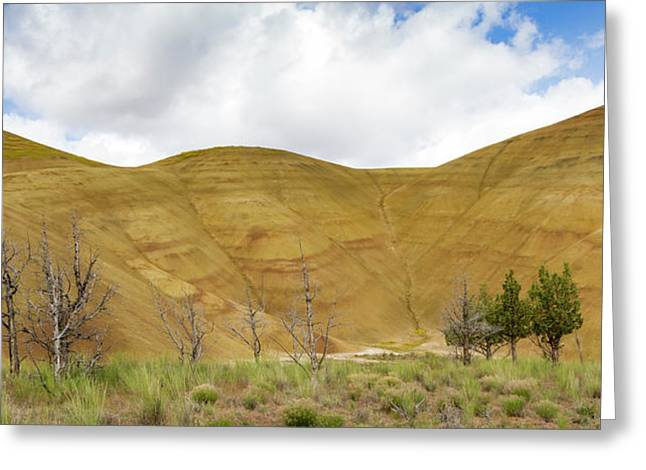 Painted Hills Panorama Greeting Card by Jean Noren