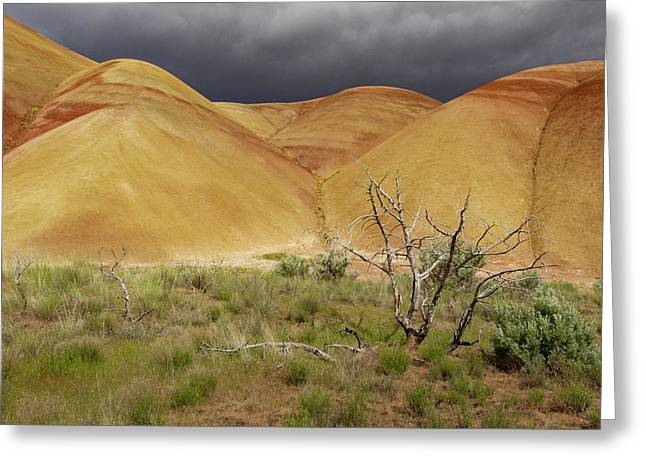 Painted Hills Storm Clouds Greeting Card by Jean Noren