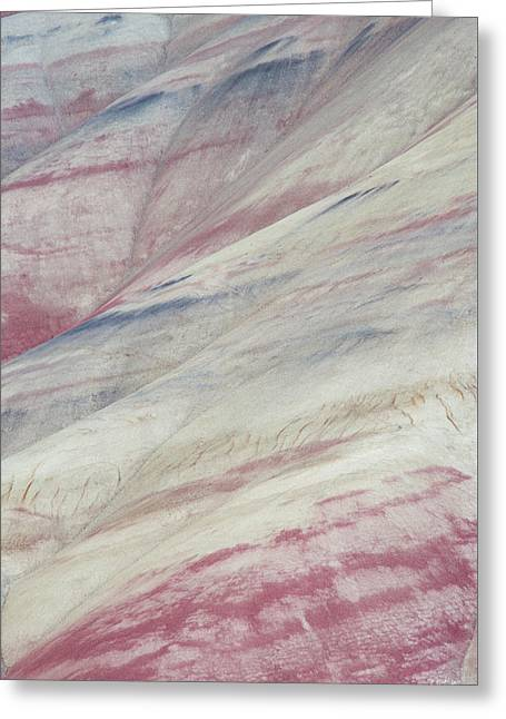 Greeting Card featuring the photograph Painted Hills Textures 3 by Leland D Howard