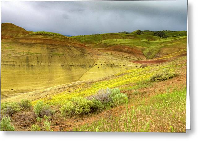 Painted Hills Weather Greeting Card by Jean Noren