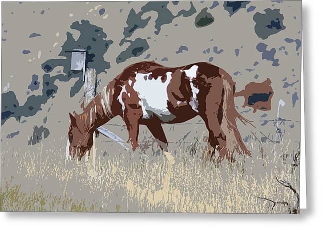 Painted Horse Greeting Card by Steve McKinzie