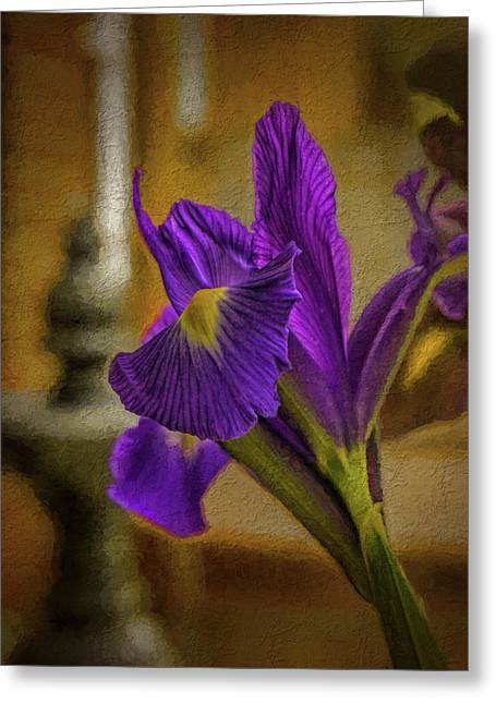 Painted Iris Greeting Card by Dave Bosse