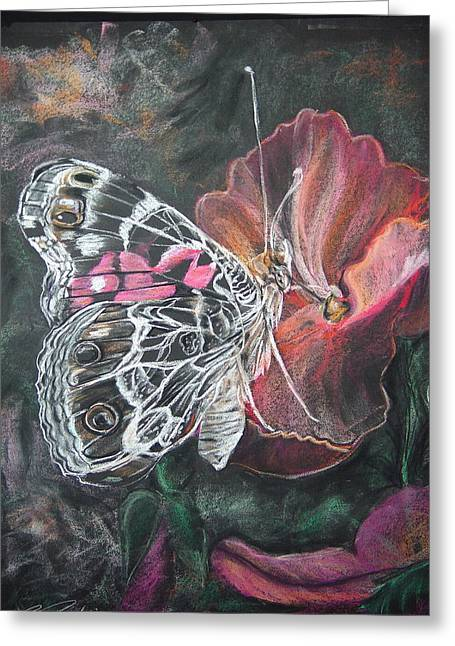 Paint Pastels Greeting Cards - Painted Lady on a pansy Greeting Card by Bonnie Peacher