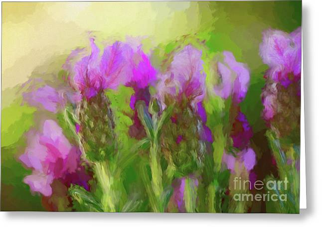 Painted Lavender Sunset By Kaye Menner Greeting Card