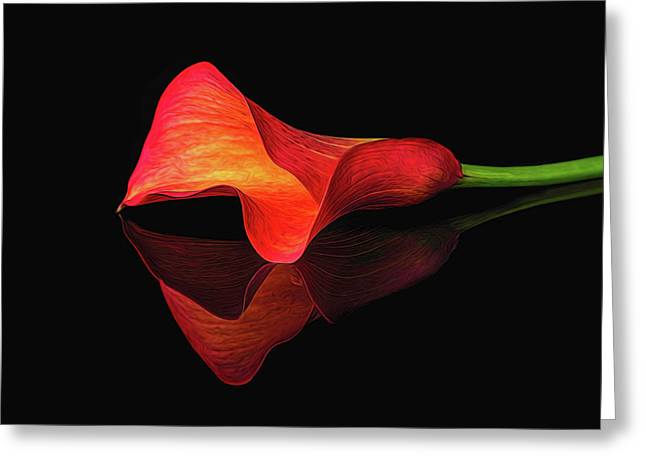 Painted Orange Calla Lily Greeting Card