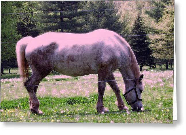 Greeting Card featuring the photograph Painted Pony by Susan Carella