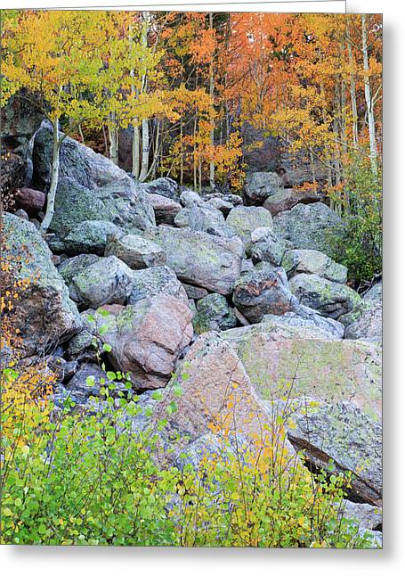 Greeting Card featuring the photograph Painted Rocks by David Chandler
