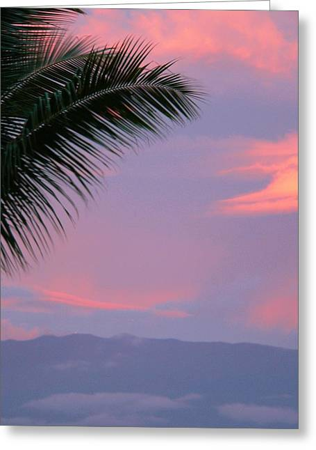 Greeting Card featuring the photograph Painted Sky by Debbie Karnes
