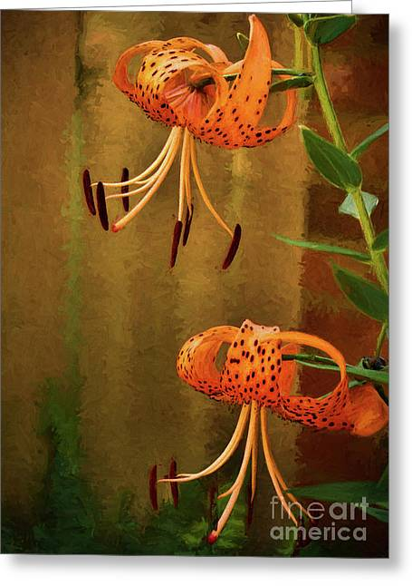 Painted Tigers Greeting Card by Dave Bosse
