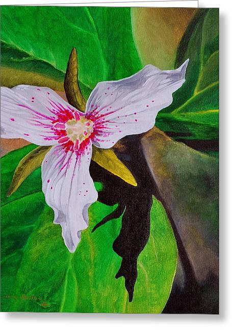 Painted Trillium Greeting Card