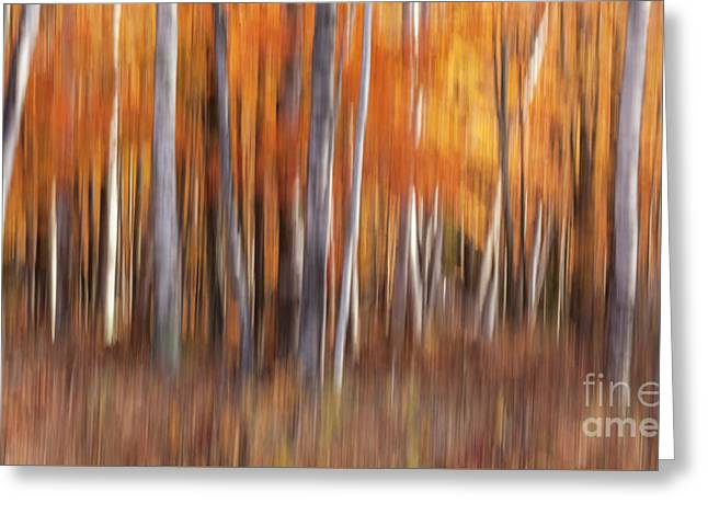 Greeting Card featuring the photograph Painterly Autumn Panorama by Brenda Tharp