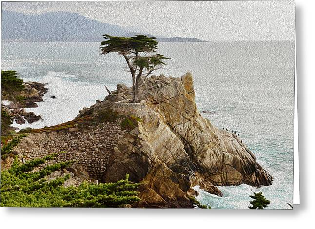 Painting Lone Cypress Detail Greeting Card by Barbara Snyder