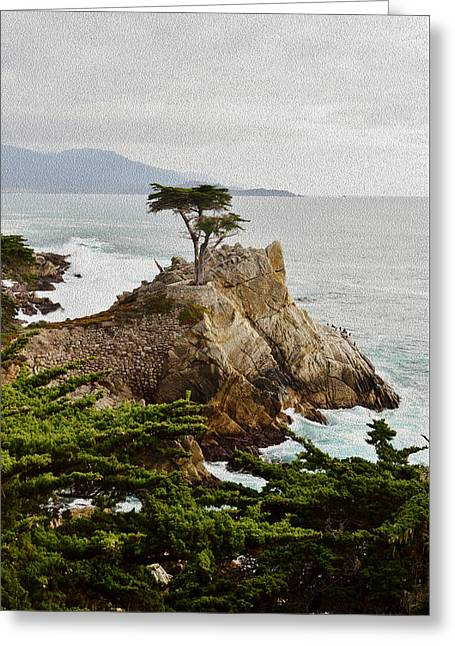 Painting Lone Cypress Monterey Greeting Card by Barbara Snyder
