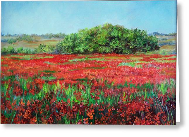 Painting Of Indian Paintbrush In Oklahoma Greeting Card by Cheri Wollenberg
