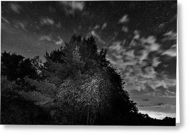 Painting The Night 3 - Bw Greeting Card by Steve Harrington