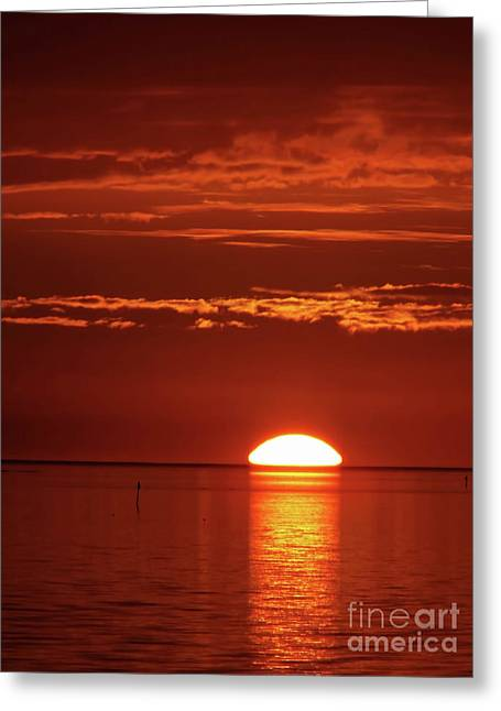 Painting The Sky Red Greeting Card by D Hackett