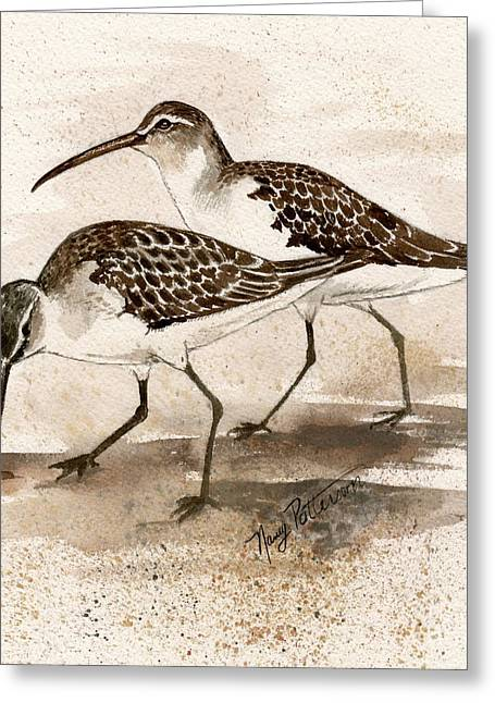 Pair Of Sandpipers Greeting Card