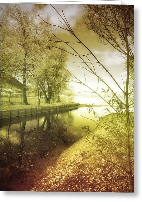 Pale Reflections Of Life Greeting Card