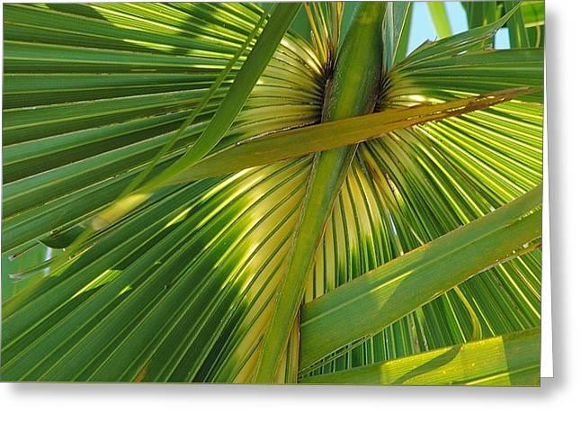 Palm Angel Greeting Card