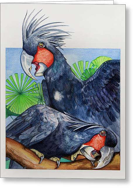 Palm Cockatoos Greeting Card by Robert Lacy