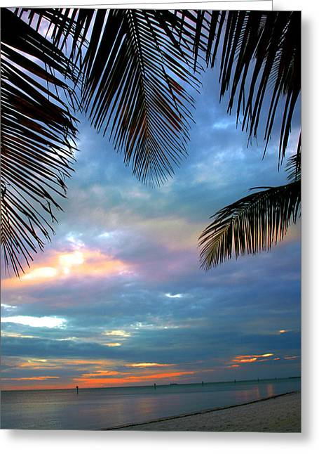 Palm Curtains Greeting Card by Susanne Van Hulst