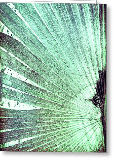 Palm Frond-lh Greeting Card by Marvin Spates