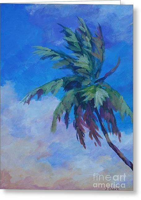 Palm In Evening Light Greeting Card by John Clark