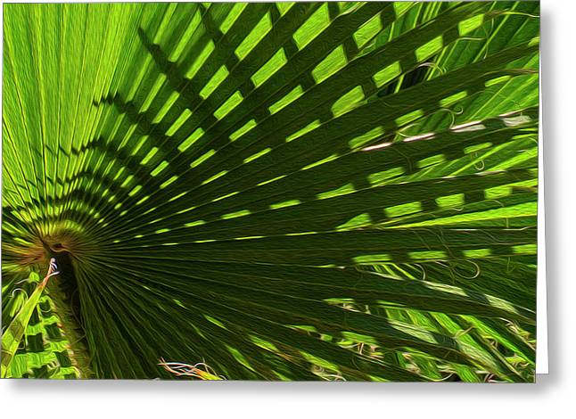 Greeting Card featuring the photograph Palm Pattern No.1 by Mark Myhaver