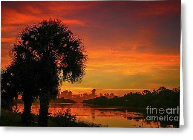 Palm Silhouette Sunrise Greeting Card