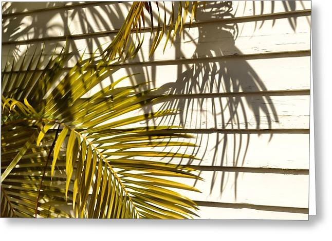 Palm Sunday Greeting Card by JAMART Photography