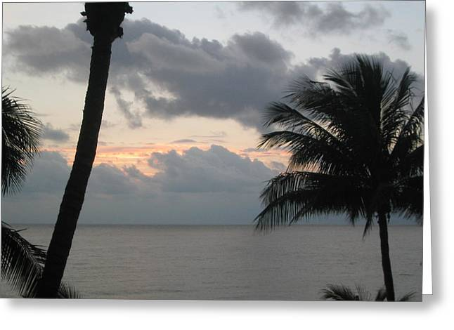 Palm Sunrise Greeting Card by Eliot LeBow